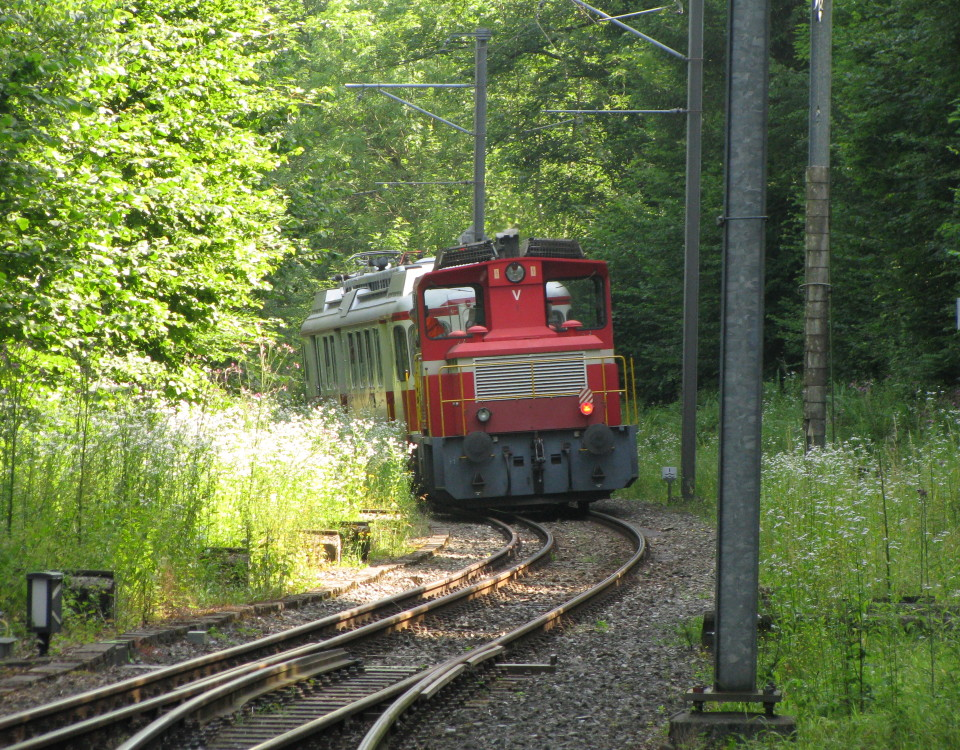 WM 2 with BDWM diesel at Erdmannlistein