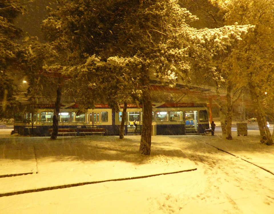 snow tram and pines at Bucheggplatz
