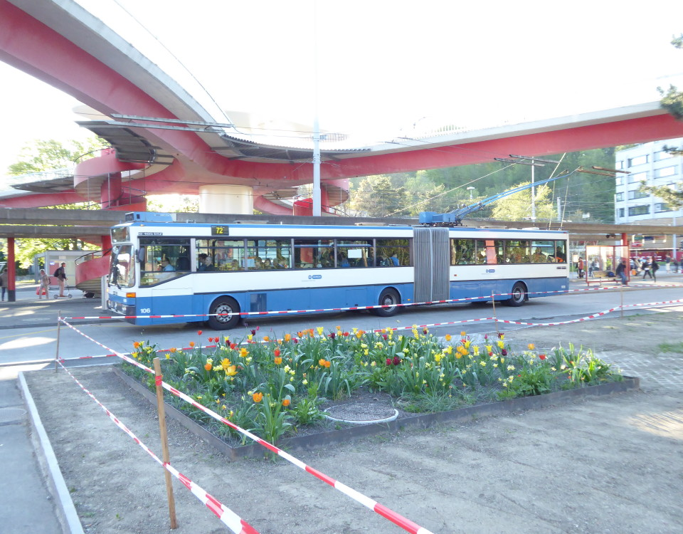 GTZ trolleybus 106 with tulips at Bucheggplatz
